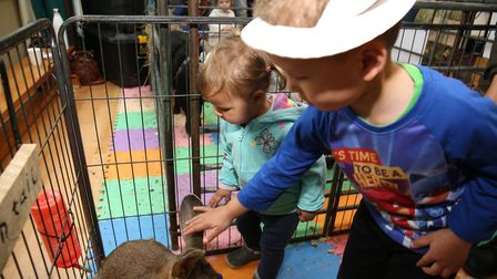 Children meeting petting zoo animals at the Easter Eggstravaganza at Mary Exton School, Hitchin. Pic