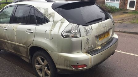 An unknown substance was thrown onto the car in Ferrier Road, Stevenage.