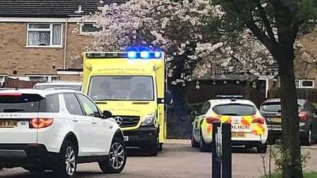 Police and the ambulance service were called to Stevenage's Winchester Close during the nearby South