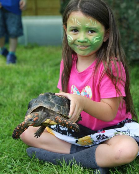 Six-year-old Leila Temperley holds a tortoise.Picture: Karyn Haddon