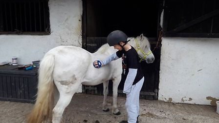 Boys at Brandles are learning all about horse management. Picture: Brandles School