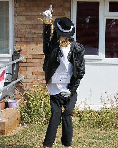 The range of different scarecrows impressed spectators at the weekend's festival. Picture: Nigel Eat