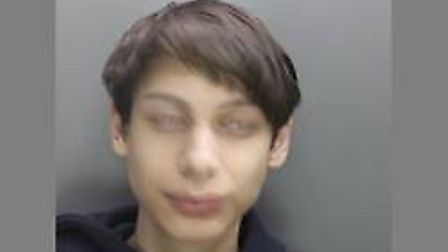 The 19-year-old was responsible for the bomb hoax which affected schools in Hertfordshire and Bedfor
