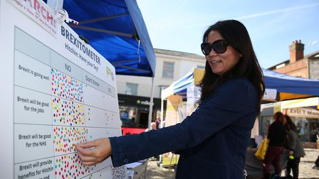 A woman has her say on the Brexitometer in Hitchin's Market Place. Picture: DANNY LOO