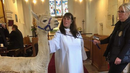 St Mary's Church in Little Wymondley welcomed village pets along to its harvest festival and pet ble