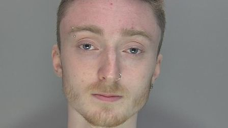 Ethan Andrews, aged 18, has been sentenced to 32 months in prison for arson and causing suffering to