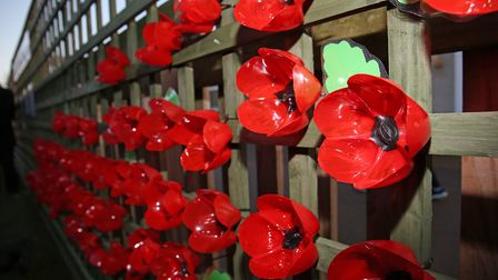 Stevenage MP Stephen McPartland attends the unveiling of a poppy memorial at Giles Nursery and Infan