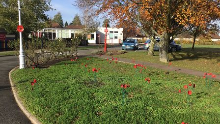 Key Stage 1 children at Icknield Infant and Nursery School created a display of poppies. Picture cou