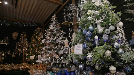 The Magic of Christmas has nine beautifully decorated display trees, each with a different theme to