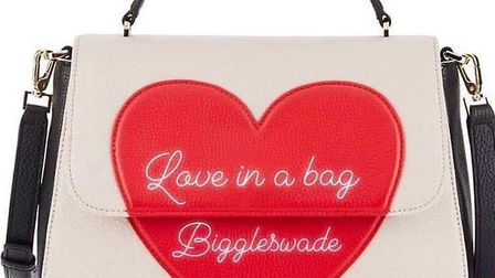 Hannah Brown started the 'Love in a Bag Biggleswade' donation drive. Picture: Love in a Bag Bigglesw