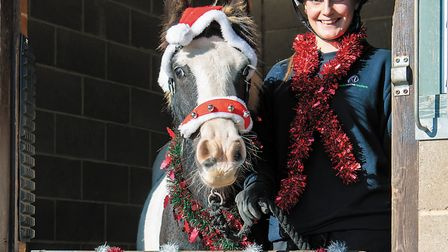 Colin has now been rehabilitated and is the face of the charity's Christmas appeal. Picture: Basil H