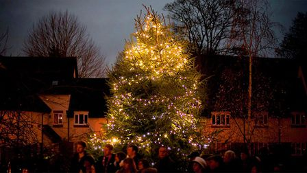 Garden House Hospice Care welcome people to dedicate a Christmas light in memory of a loved one in S