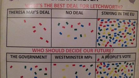 A total of 109 people stuck took part in on to the group's 'brexitometer', Picture: Courtesy of Sara