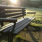 A bench covered in frost