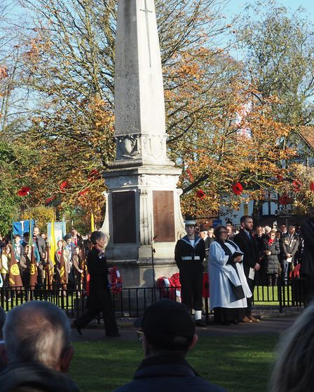 Sue Milliken on Remembrance Sunday. Picture: Rosemarie Jenkins