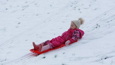 Aria Bunyan, two, sledging at Fairland Valley Park, Stevenage. Picture: DANNY LOO