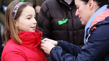 Volunteers gather and pin green ribbons on their coats as they prepare to search for missing dog, Er