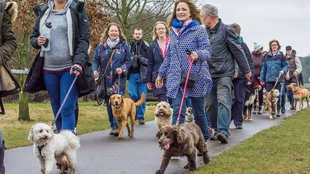 Lots of people enjoyed last year's Woof Walkies event in Stevenage. Picture: Katy Prutton.