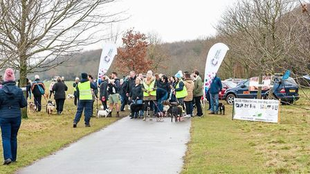 The start line at last year's Woof Walkies event in Stevenage. Picture: Katy Prutton.