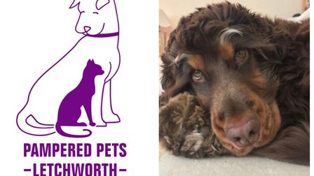 The new shop will open in The Arcade on the 23rd. Picture: Pampered Pets