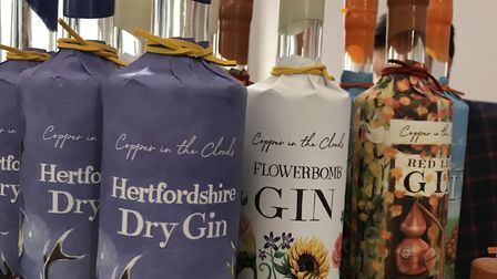 Hundreds flocked to Hitchin's Spirit of Gin Festival. Picture: Rotary Club of Hitchin Tilehouse