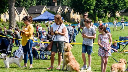 Triangle Garden's Open Day is set to return next month. Picture: Vicky Wyer