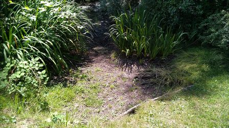 Chells Manor Pond in Stevenage has 'more or less dried up' according to concerned residents. Picture