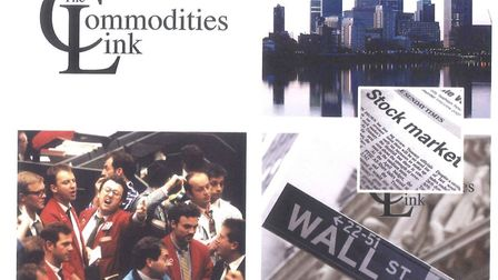 The brochure for The Commodities Link, which was set up by five men including Victoria Beckham's ex-