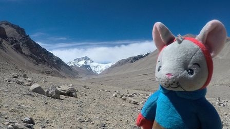 Tom Mouse at the final destination of Everest. Picture: Richard Barr