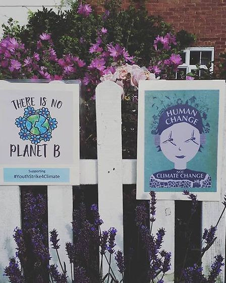Climate themed art has appeared around Letchworth in the run-up to the Global Climate Strike.Picture
