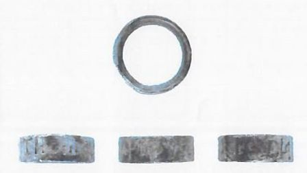 Silver vervel also known as a 'hawking ring'