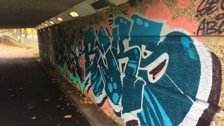 The underpasses around The Oval area of Stevenage have been sprayed with urban art designs. Picture: