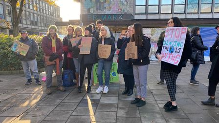 The Herts branch of the UK Student Climate Network organise a climate strike to demand action agains
