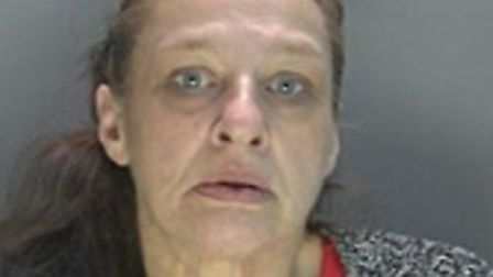 Tracey Southgate, 50 of Maytrees, Hitchin, was sentenced at St Albans Crown Court on Friday, January