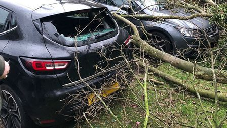 The aftermath of Storm Ciara in Oakfields, Stevenage. Picture: Supplied