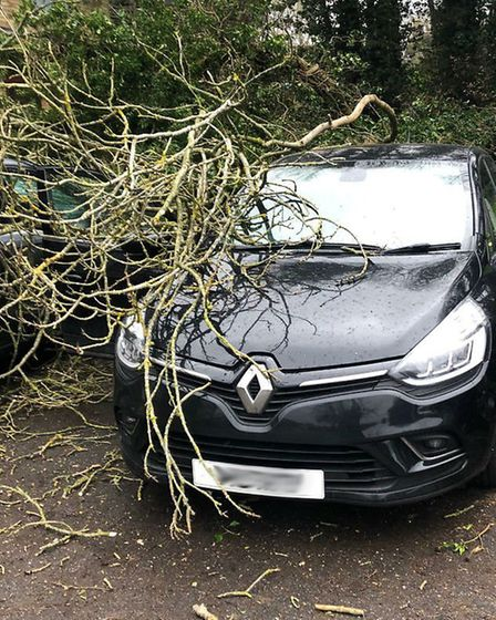 Katy's car after Storm Ciara hit Stevenage over the weekend. Picture: Supplied