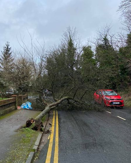 Stephanie Ramsden narrowly avoided this falling tree in Hitchin. Picture: Stephanie Ramsden