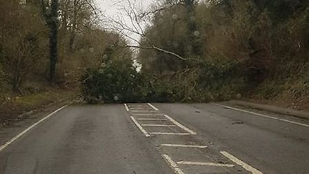 London Road, into Baldock, was obstructed in both directions by a fallen tree. Picture: Barney Sayer