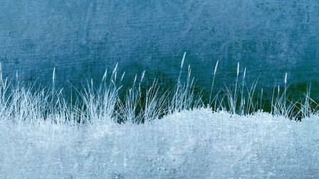 'Silver Grasses' by Lynne Blount - 1st awards in Creative Images.