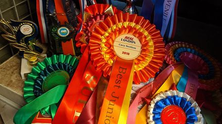 The Evans family take their guinea pigs to competitions all over the country. Picture: Jane Evans