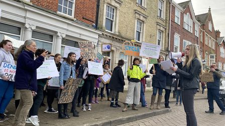 Olivia Whittle, 18, organised the protest against climate change. Photo: ANDRA MACIUCA/ARCHANT.