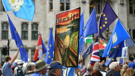 Anti-Brexit protesters in Westminster. Photograph: Dominic Lipinski/PA Wire.