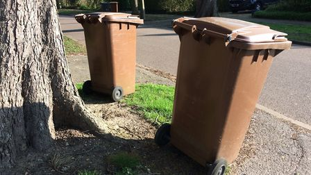 The garden waste service was suspended due to COVID-19. Picture: NHDC