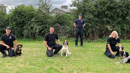 New police dogs Dexter, Oreo and Alfie join Essex Police Dog Unit, seen here with handlers and dog t