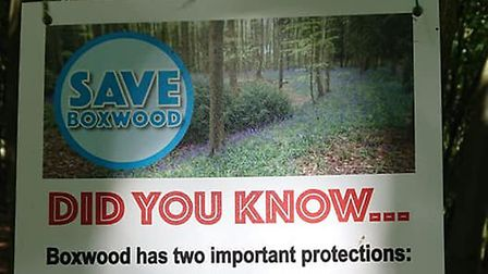 Box Wood in Stevenage has been given further protection by East Herts Council. Picture: Friends of B