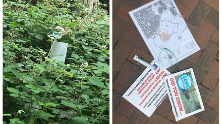 Posters and Tree Protection Orders were deliberately ripped down yesterday afternoon. Picture: Frien