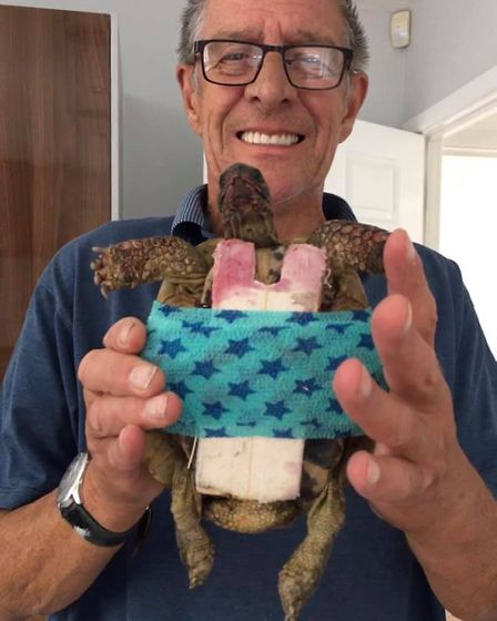 Charlie the tortoise has been reunited with his owner Christopher Hewer after escaping from his Grea
