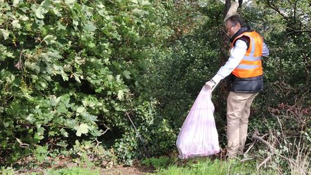 Cllr Steve Jarvis, NHDC's executive member for enviroment, picking litter on Hitchin's Windmill Hill