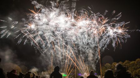 The free firework display in Stevenage will not go ahead this year. Picture: CELIA BARTLETT PHOTOGRA