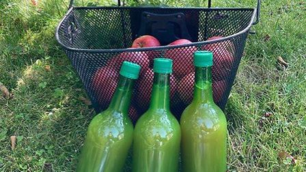 Transition Town Letchworth has been pasteurising batches of juice bottles from apples growing in the